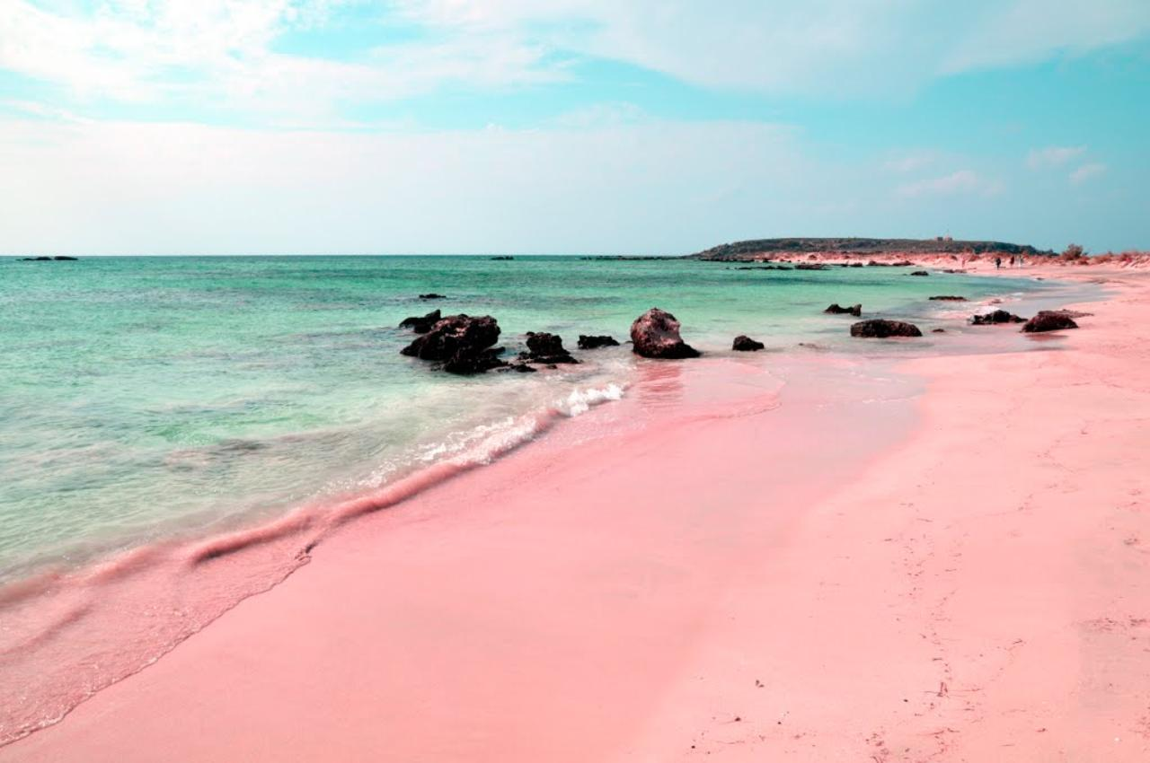 wish you were here: pink sands beach, bahamas