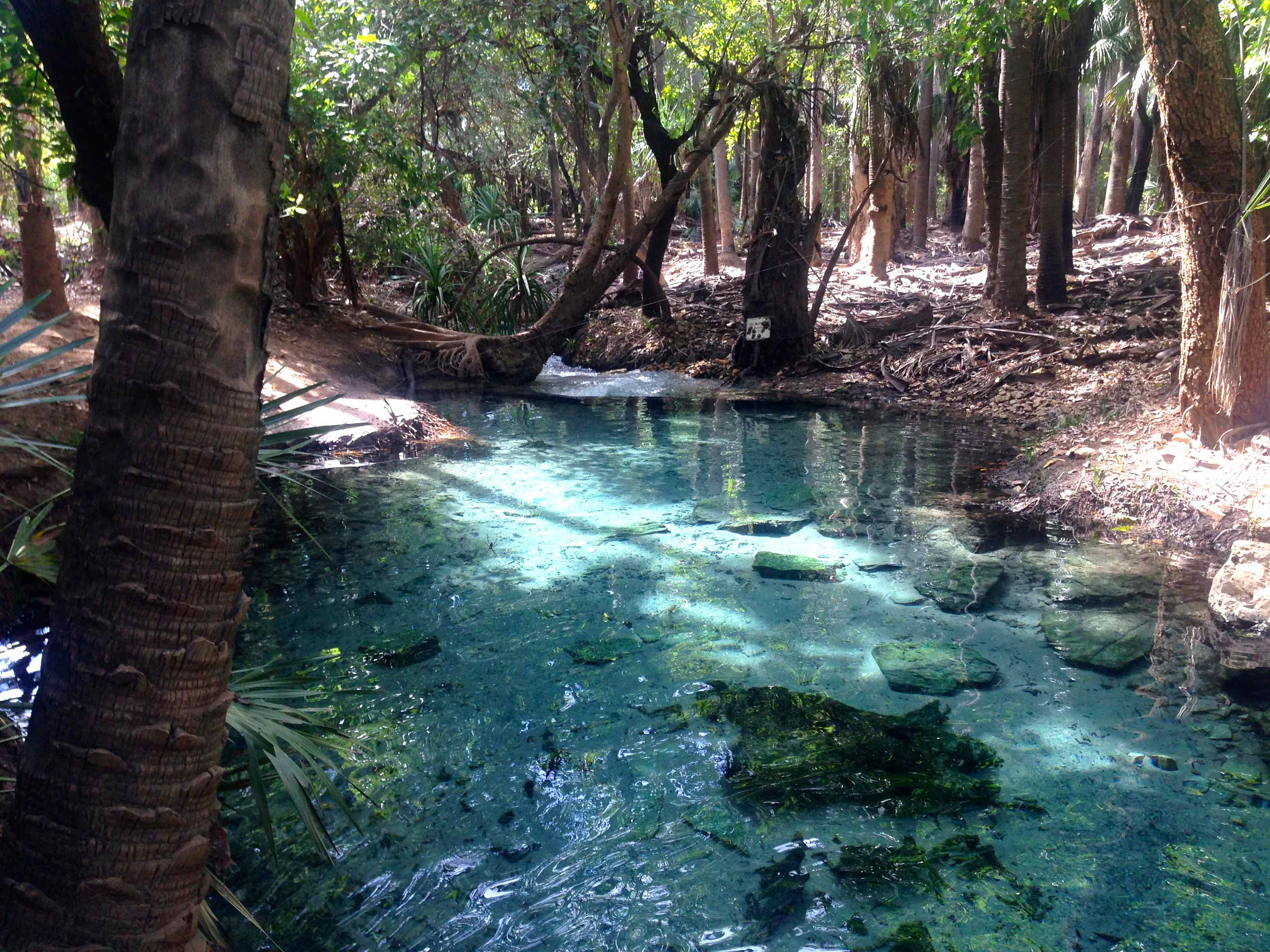 Outback Close To Me >> The 9 Best Swimming Holes Near Darwin In The Northern Territory