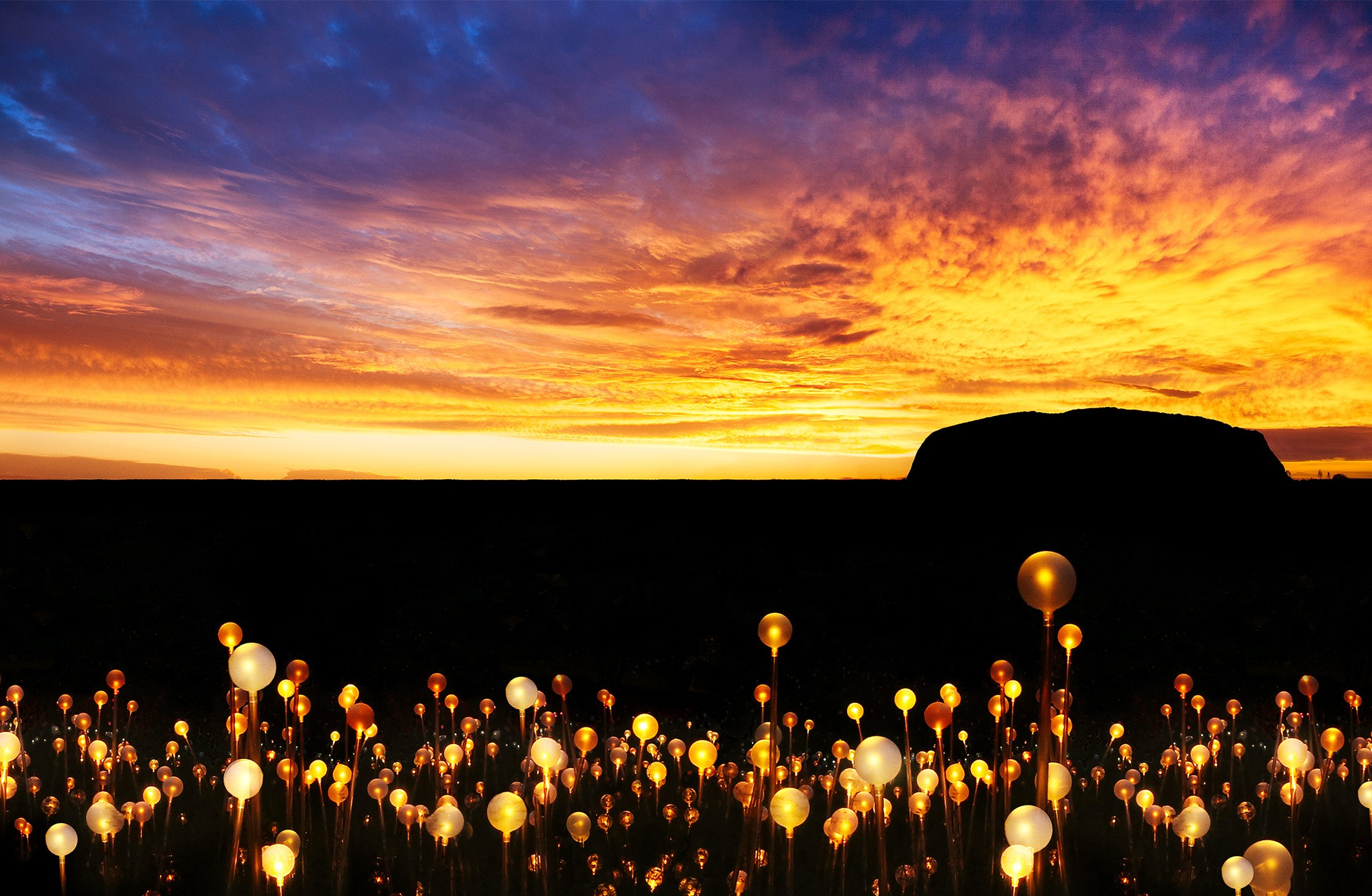 High Quality Striking Large Scale Art Piece U0027Field Of Lightu0027 By British Installation  Artist Bruce Munro Will Be Coming To Ayers Rock Resort Next Year To  Illuminate A ... Gallery