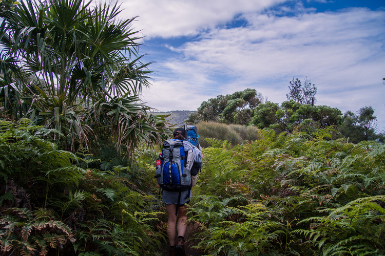 10 best Australian multi-day hikes - Australian Geographic |Hiking Australia