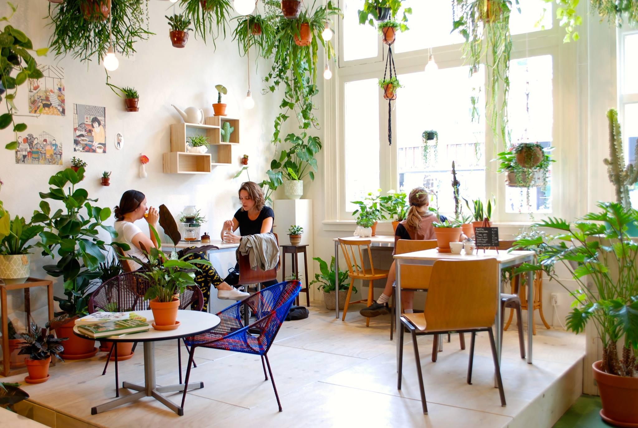 O The Plant Cafe Menu