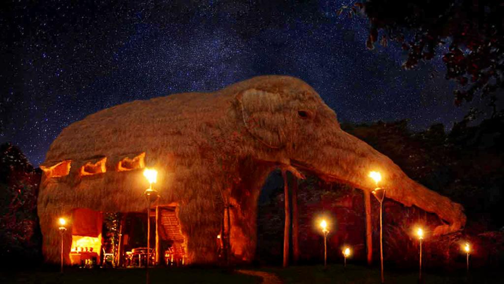you can sleep in a freakin 39 elephant in sri lanka. Black Bedroom Furniture Sets. Home Design Ideas