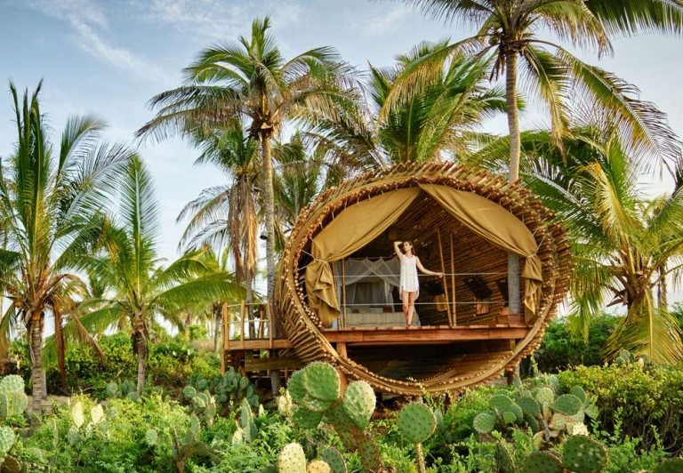 Most Expensive Tree House In The World this treehouse sure looks like a good place to stay on your mexico