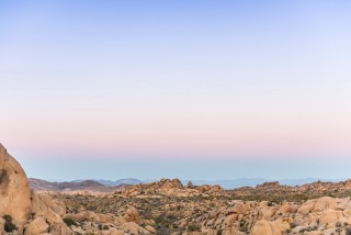 JoshuaTree_California_USA_DominicLoneragan_MeghanLoneragan_080516_0291_forweb_awol