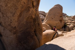 JoshuaTree_California_USA_DominicLoneragan_MeghanLoneragan_090516_0376_forweb_awol