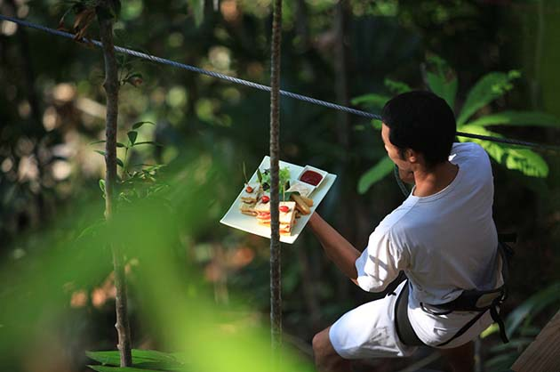 Image result for tree pod dining thailand