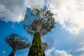 Singapore_GardensByTheBay_SSHProducts_CitizensoftheWorld_DominicLoneraganPhotography_MeghanMcTavish_TravelPhotography_150216_0007