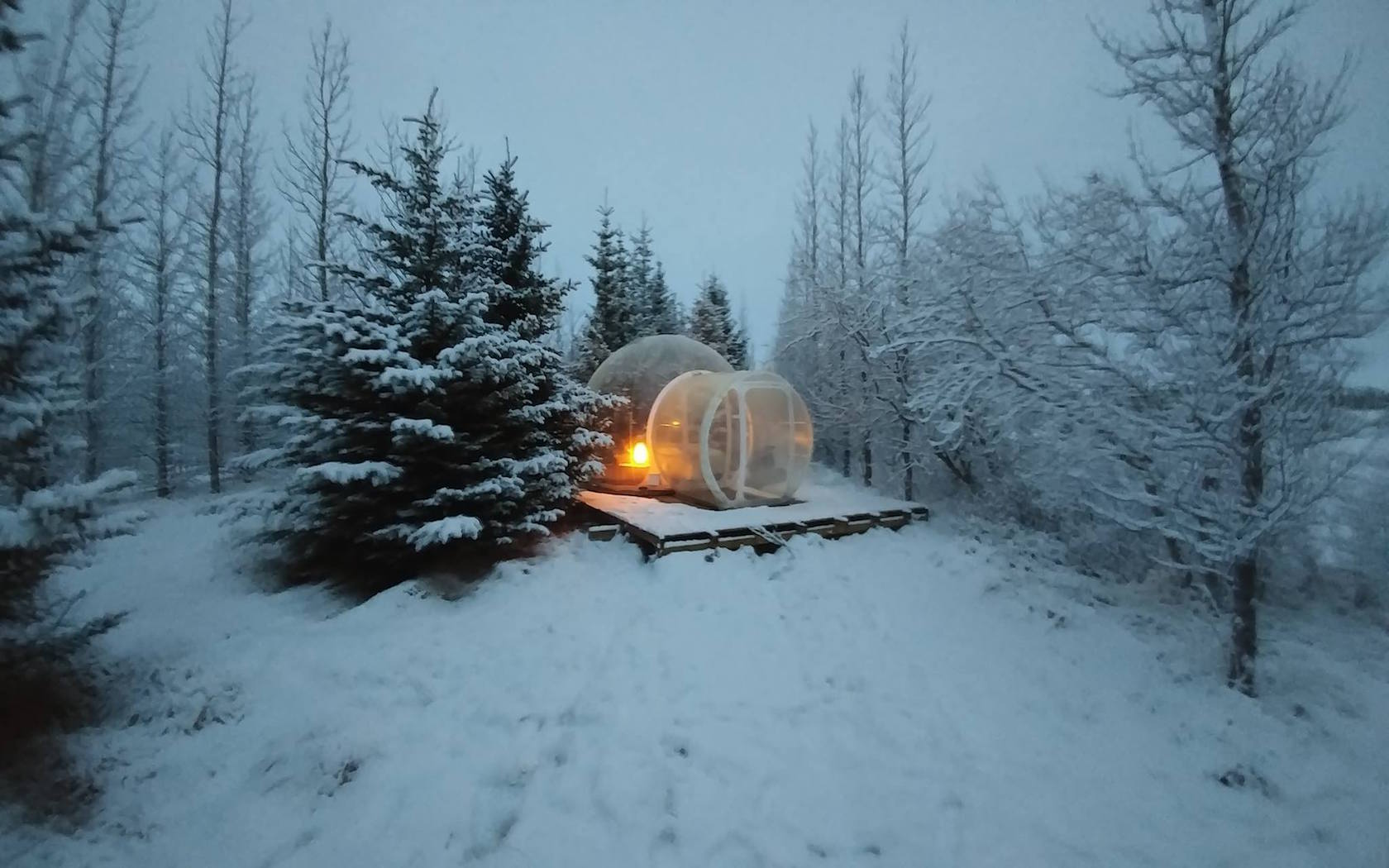 Iceland Has A Buubble Hotel Hidden In A Secluded Forest