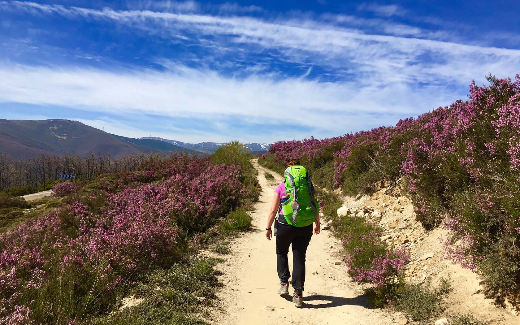 5 Things To Know Before Hiking Spain's Camino De Santiago