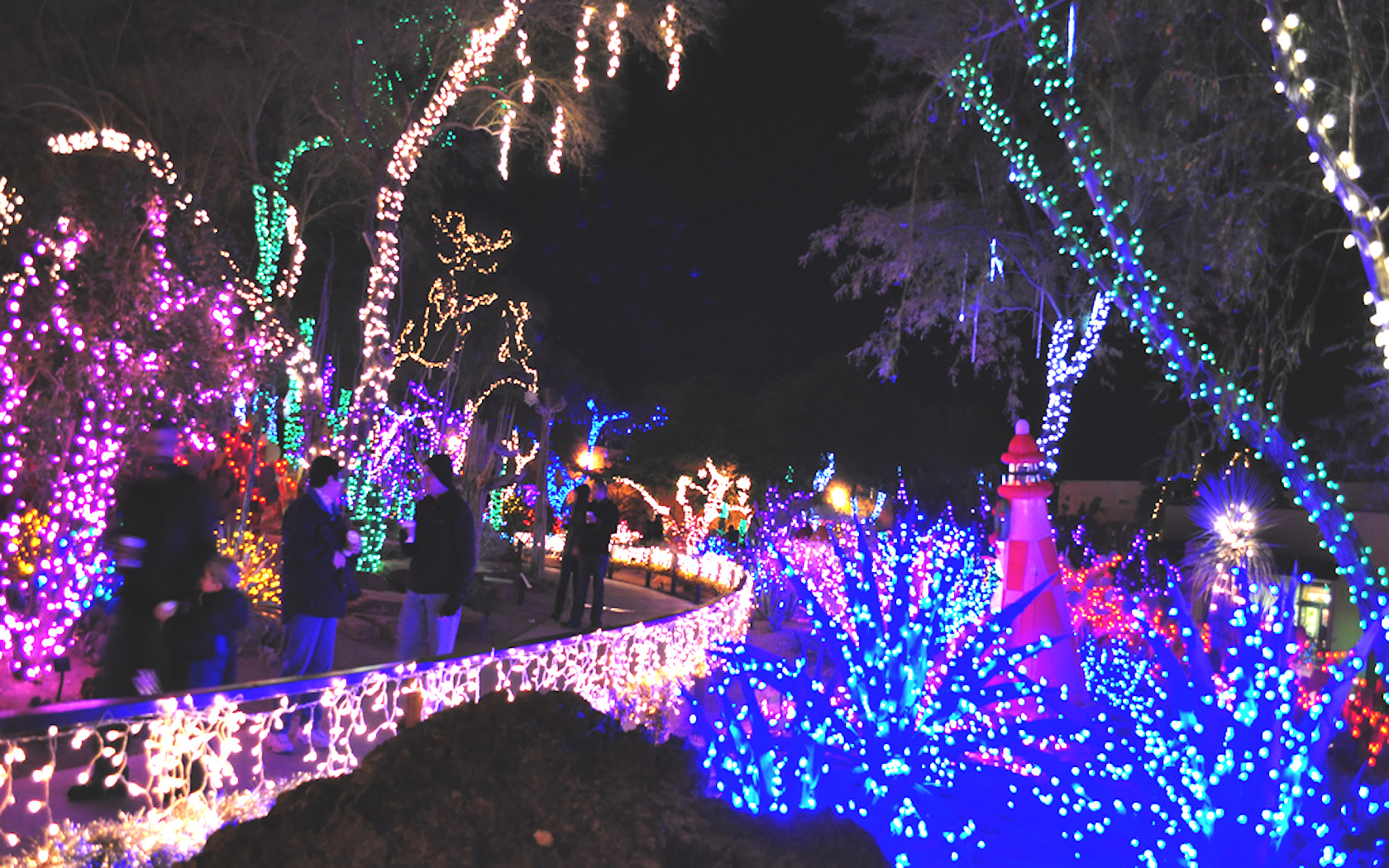 Ethel M Botanical Cactus Garden Turns Into A Christmas Wonderland