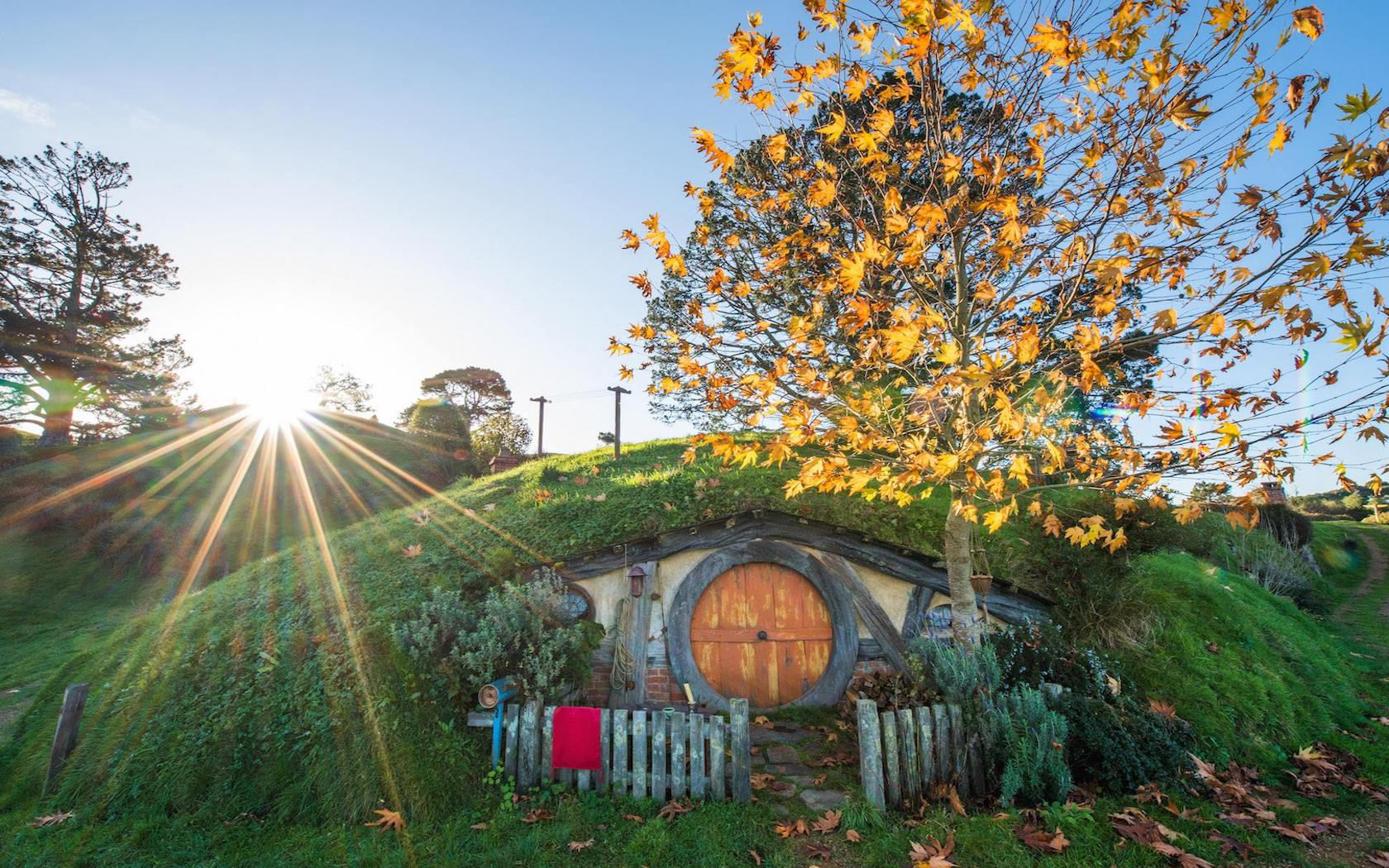 Live Out Your Lord Of The Rings Fantasy At Hobbiton In New Zealand