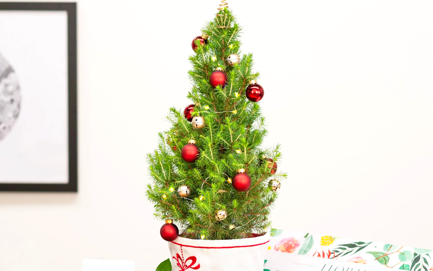 Christmas Tree Delivery Floraly Will Send A Cute Lil Pine To Your Door