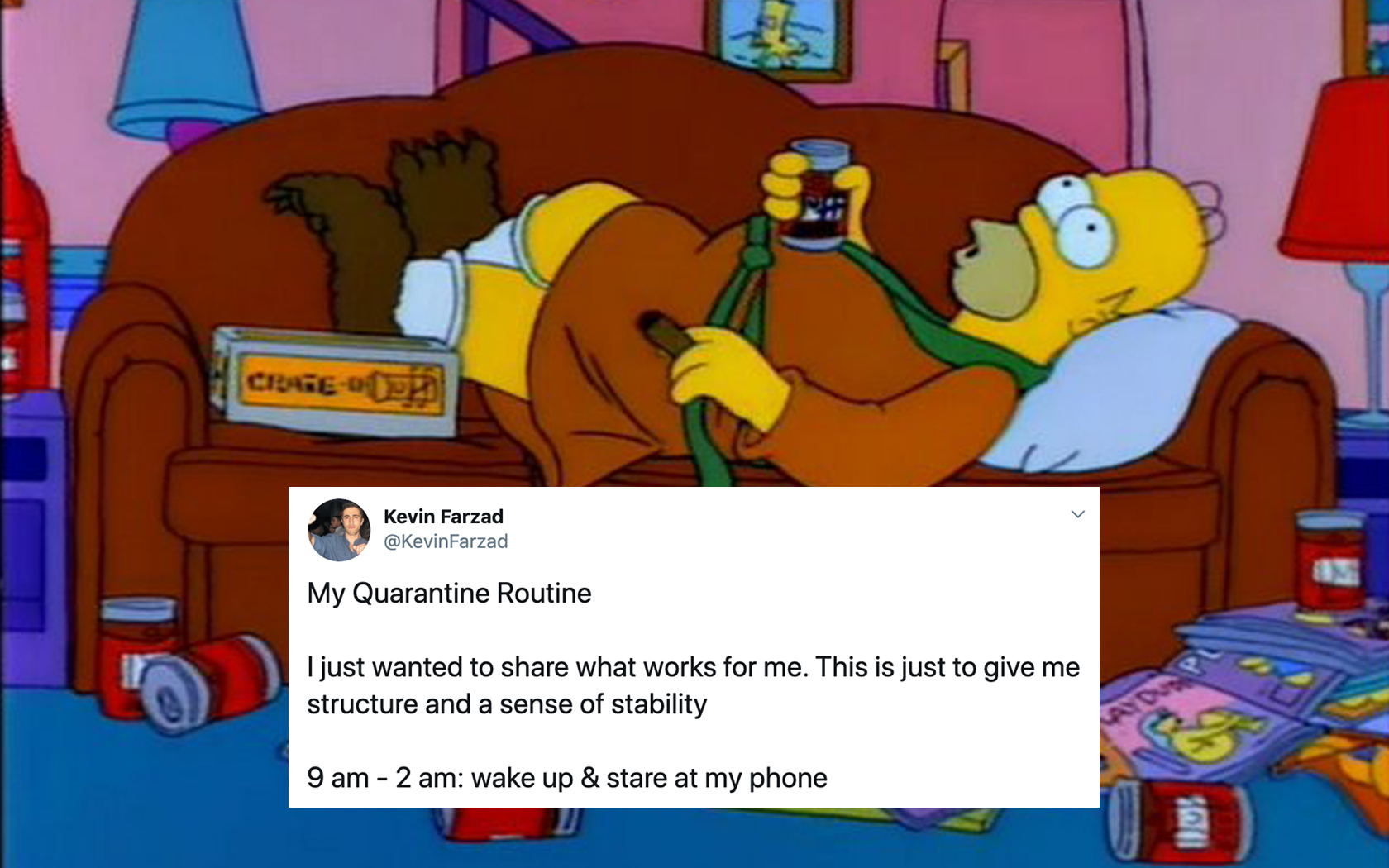 Quarantine Routine People Are Sharing Hilariously Fake Daily Routines